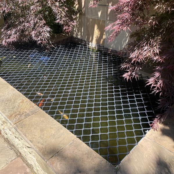 Ponds of Melbourne_Pond Grill 2